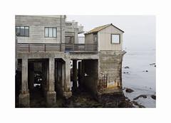 ** (ha*voc) Tags: canon6d canon28mm28is usa monterey rusty port urban urbanentropy california