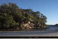 Secluded (Joseph@Oz) Tags: collinsflatbeach manly nikond750 d750 nikon beach nature secluded secludedbeach australia sydney