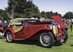 1938 MG TA (jonporter94087) Tags: hillsboroughconcoursdelegance mgta nikond500 nikon1680mm