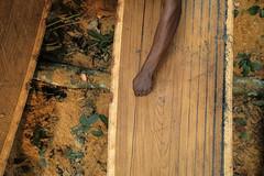 Formation, Recherche, et Environnement dans la Tshopo (FORETS), Democratic Republic of Congo (CIFOR) Tags: measurement economics forestproducts forests forets householdexpenditure householdincome illegallogging income logging logs measure rainforests smallbusinesses smallholders socioeconomics timber timberproduction timbers tropicalforests valuechains tshopo orientale democraticrepublicofthecongo cd