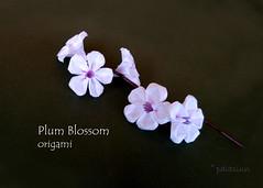 Plum blossom origami (polelena24) Tags: plum flower origami spring blossom