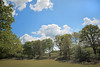 "Nomansland Common - St Albans UK. (""DavidJHiom"") Tags: nomansland stalbans davomphotos davidjhiom tistheseason galaxy saarlysqualitypictures"