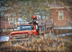 Trashy Neighbor    ....HTT! (jackalope22) Tags: htt red pickup thursday ford wood