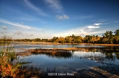 Horbeck Creek_064001.jpg