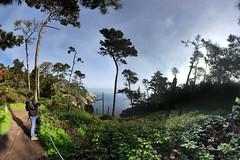 2018-03-3818-southwest-panorama-03.32b (Timothy Shea) Tags: panorama pointlobos