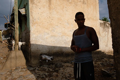 Dire Dawa, Ethiopia (f.d. walker) Tags: africa diredawa ethiopia man goat goats farm animal animals pets streetphotography street sunlight shadow sun surreal candidphotography candid color colorphotography city contrast mood atmosphere