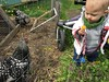 (codfisch) Tags: sigil chickens corva muneca