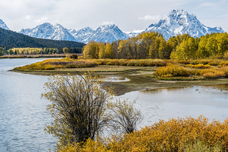 Oxbow Bend...