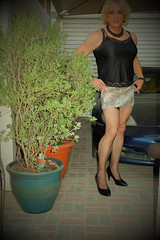 Empfange den Sohn meiner neuen Nachbarn ;-) (SheerBelette) Tags: blonde tranny lady boy ladyboy dame transe transformation transvestite tgurl tgirl mtf legs beine stockings halterlose strumpfhose pantyhose lingerie boobs titten anal prono porn arsch ass bum butt heels highheels pumps nutte schlampe whore slut slutty nylon fishnet skirt minirock miniskirt cfm enfemme crossdresser shemale sex sexy bimbo hure parkplatzsex dogging rock milf tilf cougar mature feminisation fem xdress sissy transgender angel evilangel drag