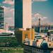 United Nations & vicinity, 1st Avenue, Manhattan, NYC