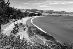 San Simeon Cove _ bw (Joe Josephs: 3,166,284 views - thank you) Tags: california travel travelphotography westcoast hiking hikingtrails sansimeoncalifornia sansimeonstatepark beach beaches surf pacificocean pacificcoasthighway water blackandwhite bw blackandwhitephotography monochrome