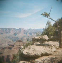 Grand Canyon (jillybeanmi) Tags: grandcanyon grandcanyonnationalpark gcnp holga portrafilm rollfilmweek 120rollfilm 120film analog arizona