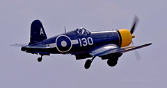 Formidable foe... (Ian A Photography) Tags: aeroplanes aircraft airshow aviation corsair duxford duxfordlegends fighters flyinglegends goodyear fg1d 88297 historicaircraft nikon planes vought warbirds warplanes