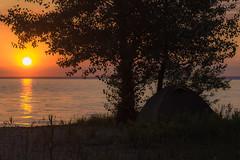 Alone on the coast (Marat Assanov) Tags: bank river water ukraine summer tent sun sunrise sand tree