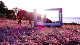 Sunshine #sunset #sun #tv #newworld #hope #nowar #peace #starseed #awake
