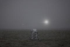 unknown presence (Mindaugas Buivydas) Tags: lietuva lithuania color winter december mystery dark darkness mood moody delta nemunasdelta mindaugasbuivydas memelland