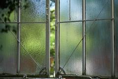 Riffelglas (Lepantho) Tags: fujixt2 fujixf56mm botanischergarten glasscheiben gewächshaus berlin deutschland germany