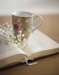 (Julia C. F) Tags: reading book mug whiteflowers simplicity stilllife