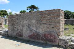 IMG_4944 Paestum (drayy) Tags: paestum rome roman ancient magnagraecia temple town italy europe campania greek