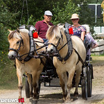 Paardenvriend (80 van 141) thumbnail