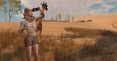 Take A Walk On The Wild Side (pulpfictionstudio) Tags: secondlife challenge truth osmia safari bindi zoo giraffe desert australia devinseye theepiphany