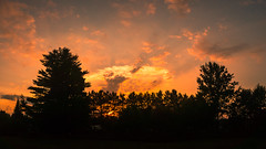 When The Sun Goes Down, Except The Humidity (Nicholas Erwin) Tags: sunset summer humid clouds sky silhouette landscape nature naturephotography rural hot evening samsunggalaxys7 galaxys7 mobilephotography mobile cellphone smartphone waterbury vermont vt unitedstatesofamerica usa america panorama panoramic pano fav10 fav25