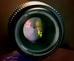 Photography Gear_MM (Anavicor) Tags: photographygear macromonday hmm mm monday lunes macro lunedi lundi nikon d5300 tamron90mm montag segundaferia anavicor anavillar villarcorreroana photography diafragma apertura lens lente objetivo diaphragm bokeh