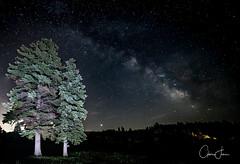 Central NY Milky Way (calmingfocus) Tags: nighttime stars slowshutter milkyway cny