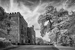 Muncaster castle & Tom Fools tree (Ade G) Tags: bw infrared nature buildings castle plants trees