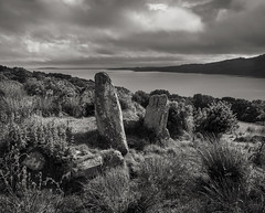 Kyles View, Glenvoidean Chambered Cairn (CactusD) Tags: bute isleofbute scotland archaeology chamberedcairn glenvoidean kylesofbute argyll uk unitedkingdom united kingdom greatbritain great britain gb nikon d800e 24pce 24mmf35pce tiltshift f35 24mm monochrome bw blackandwhite black white landscape seascape kilmichael