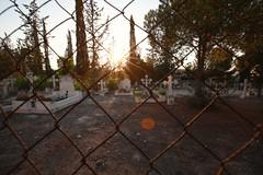 Old cemetery at Nicosia (6) (Polis Poliviou) Tags: nicosia lefkosia street summer capital life live polispoliviou polis poliviou πολυσ πολυβιου cyprus cyprustheallyearroundisland cyprusinyourheart yearroundisland zypern republicofcyprus κύπροσ cipro кипър chypre chipir chipre кіпр kipras ciprus cypr кипар cypern kypr ©polispoliviou2018 streetphotos europe building streetphotography urbanphotography urban heritage people mediterranean roads afternoon architecture buildings 2018 city town travel naturephotography naturephotos urbanphotos neighborhood