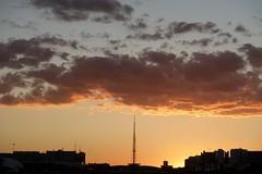 Entardecer em Brasília (Francisco Aragão) Tags: franciscoaragão fotografo fimdetarde sunset cores df brasilia brasil planopiloto horizonte torredetv predios silhuetas capitaldobrasil ceu ocaso entardecerembrasilia ceudebrasilia nuvens canong7xmkii fotografia paisagemurbana