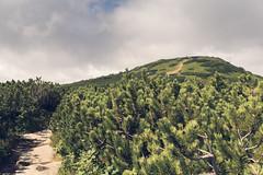 Babia Mountain (wanna be free to fly) Tags: babia babiamountain mountain beskidzywiecki poland weather clouds sun light shadow