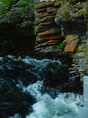 Rock Island Bridge (Pictoscribe) Tags: pictoscribe icicle river canyon vegetation