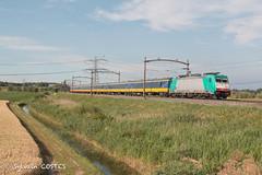 Un Intercity Amsterdam - Bruxelles avec Traxx 1802 (Sylvain COSTES) Tags: autrespays dordrecht hollande train