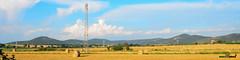 A-LUR_6412 (OrNeSsInA) Tags: panicale paciano trasimeno umbria italia italy natura panorami landescape
