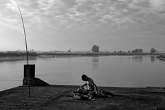 Paysage Charentais - Le jeune pêcheur (Paolo Pizzimenti) Tags: hermione fantôme charente sudouest france paolo olympus penf zuiko 25mm f18 film pellicule argentique reflet m43 mirrorless doisneau