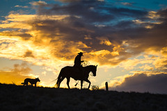 Sunset Heading Home (blackhawk32) Tags: cowboy hideout hideoutlodge wyoming horses silhouette sunset
