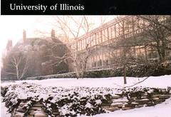 College of Law (The Urbana Free Library Digital Collections) Tags: universityofillinoisaturbanachampaign champaignil urbanail studentorganizations students studenthousing illinois