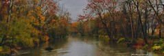 Tell me all that you know I'll show you snow and rain (Kathryn Louise18) Tags: canon kathrynlouise pennsylvania northeast erie foliage landscape nature waterscape fall trees treelined roberthunterlyrics gratefuldeadlyrics