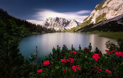 Seebensee (One_Penny) Tags: austria alps canon6d landscape mountains nature photography flowers red trees water lake peak clouds sky longexposure seebensee wettersteingebirge hiking outdoor view scenery mountainlake