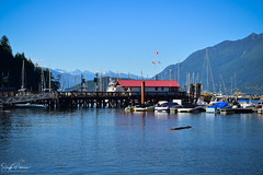 Horseshoe Bay Pier - West Vancouver (SonjaPetersonPh♡tography) Tags: westvancouver westvan districtofwestvancouver horseshoebay horseshoebaymarina inlet howesound nikon nikond5300 landscape water waterscape bcferries bc britishcolumbia canada harbour vessels boats marina