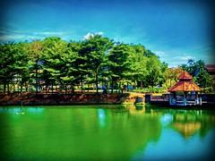 Tasik Aman, Petaling Jaya, Selangor https://goo.gl/maps/SzB3KMmctWD2  #travel #holiday #trip #traveling #旅行 #度假 #亞洲 #Asian #Malaysia #馬來西亞  #여행 #ホリデー #휴일 #праздник #путешествие #วันหยุด #การเดินทาง #selangor #bluesky #Tasik #湖 #ทะเลสาป #호수 #بحيرة #озеро # (soonlung81) Tags: trip วันหยุด vacanza sjö malaysia путешествие resa 휴일 bluesky 馬來西亞 lake 旅行 reise semester asia 여행 seei asian voyage 度假 호수 traveling lac urlaub ホリデー tasik озеро بحيرة การเดินทาง holiday праздник selangor 湖 lago ทะเลสาป vacances fiesta viaggio 亞洲 viaje travel