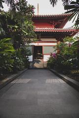 Beautiful terrace Garden at Buddha Tooth Relic Monastery, Chinatown, Singapore (SaiKiranKanuri) Tags: singapore roof top garden buddha tooth relic temple