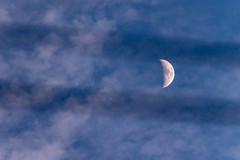 Electric Lines Moon (NathalieSt) Tags: europe france hérault languedocroussillon occitanie paysage landscape nature nikon nikond5500 nikonpassion nikonphotography saintjeandevedas moon lune
