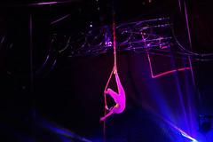 D18118.  Circus Zyair. (Ron Fisher) Tags: circus circuszyair bigtop