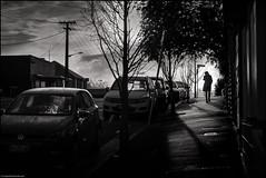 London, Paris, North Hobart (niggyl (well behind)) Tags: contrejour backlit backlight northhobart tasmastreet street fujifilm fujifilmxt2 fujixt2 fuji xt2 contax contaxg452planar contaxzeissg45mmf2planar g452 contaxzeissg452planar zeiss zeisslens mmount frankenzeiss blackandwhite bw bandw monochrome mono