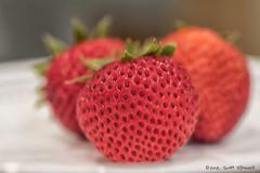 Strawberry (scottnj) Tags: 365the2018edition 3652018 day195365 14jul18 colorful fruit strawberry foodphotography macro jerseystrawberries nj newjersey scottnj scottodonnellphotography macrophotography tabletopphotography 365project freshfruit