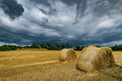 Hay Field (Jeremy Gadd) Tags: ulster ultrawideanglelens hillsborough countyantrim hay field northernireland clouds darkskies