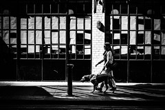 Chaperon de lumière (Kieron Ellis) Tags: woman dog guide contrast dark light bright shadows reflections windows wall pavement sunglasses bollard street candid blackandwhite blackwhite monochrome